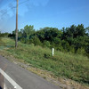 IMG_20120606_080206.jpg
